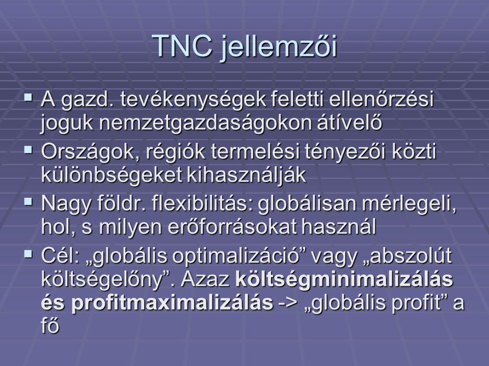 TNC jellemzői A gazd. tevékenységek feletti ellenőrzési joguk nemzetgazdaságokon átívelő.