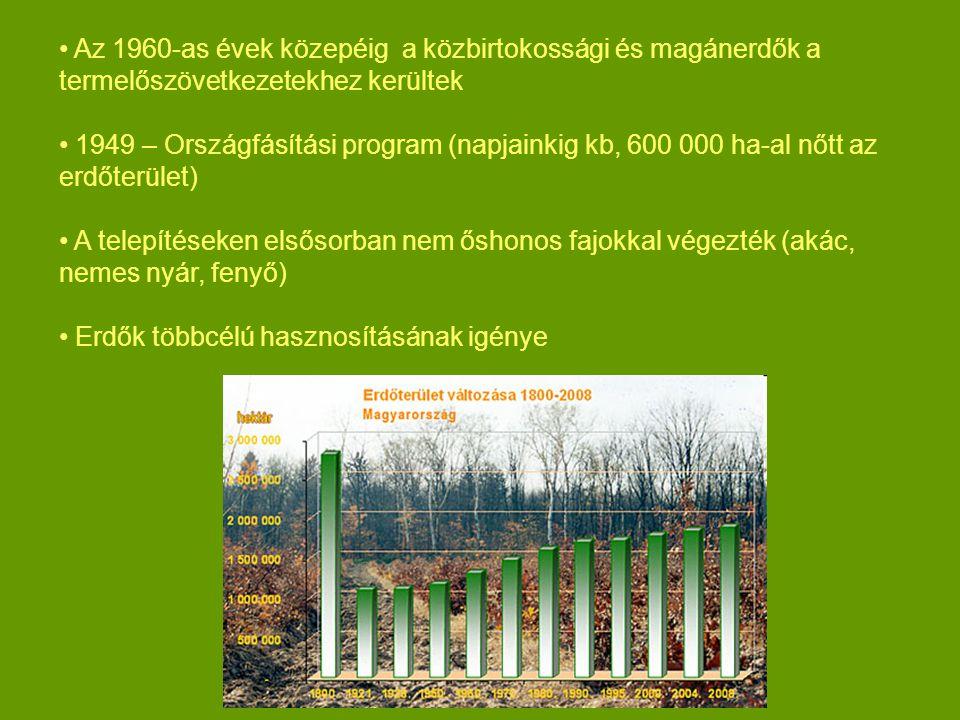 Az 1960-as évek közepéig a közbirtokossági és magánerdők a termelőszövetkezetekhez kerültek