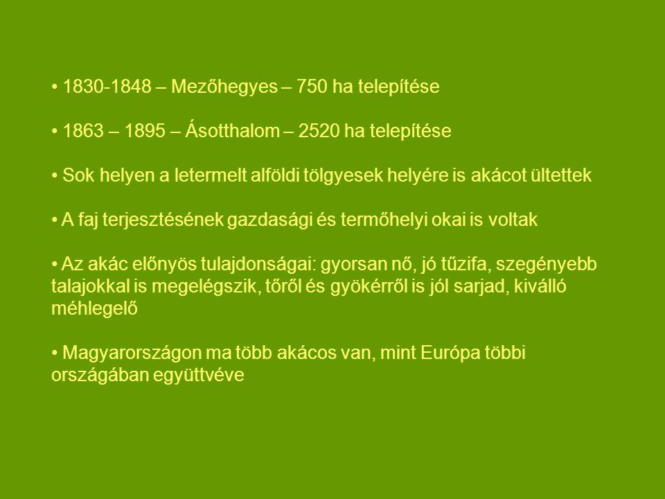 1830-1848 – Mezőhegyes – 750 ha telepítése