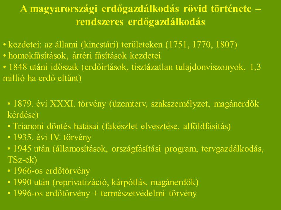 A magyarországi erdőgazdálkodás rövid története – rendszeres erdőgazdálkodás