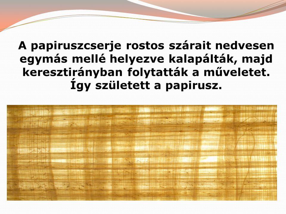 A papiruszcserje rostos szárait nedvesen egymás mellé helyezve kalapálták, majd keresztirányban folytatták a műveletet.