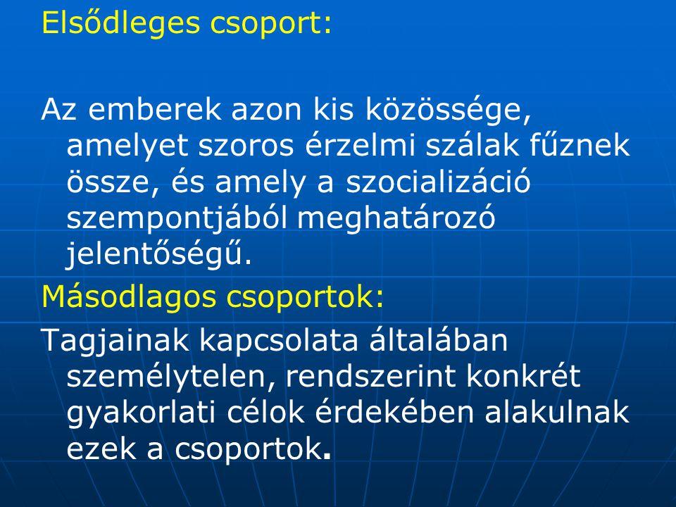 Elsődleges csoport: