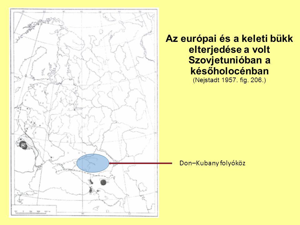 Az európai és a keleti bükk elterjedése a volt Szovjetunióban a későholocénban (Nejstadt 1957. fig. 206.)