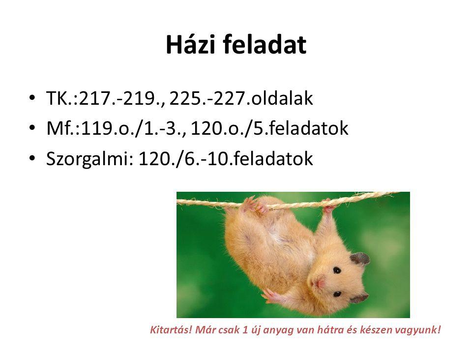 Házi feladat TK.:217.-219., 225.-227.oldalak