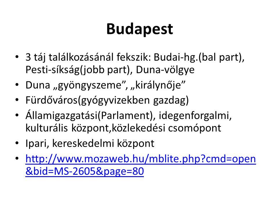 """Budapest 3 táj találkozásánál fekszik: Budai-hg.(bal part), Pesti-síkság(jobb part), Duna-völgye. Duna """"gyöngyszeme , """"királynője"""