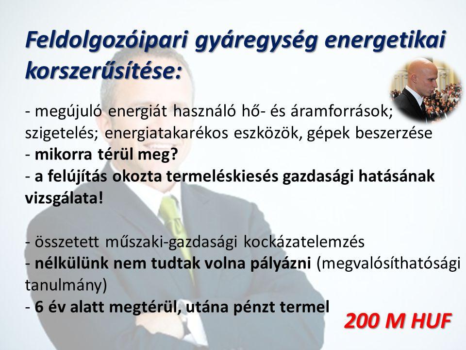 Feldolgozóipari gyáregység energetikai korszerűsítése: