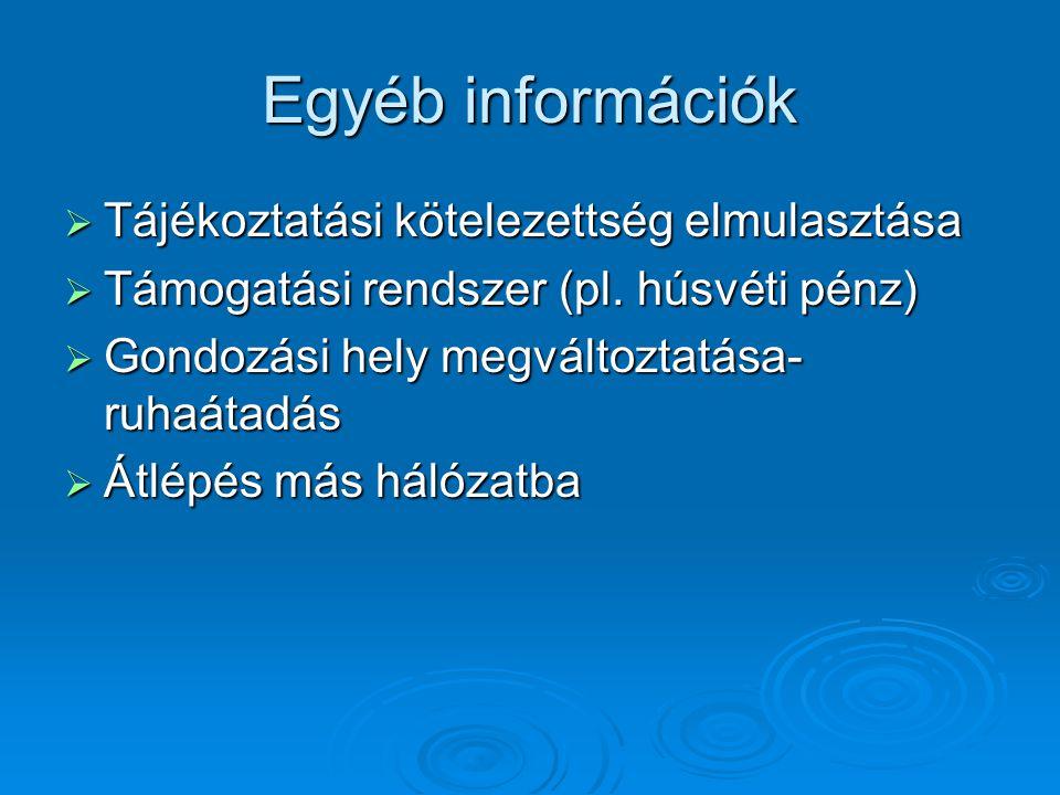 Egyéb információk Tájékoztatási kötelezettség elmulasztása
