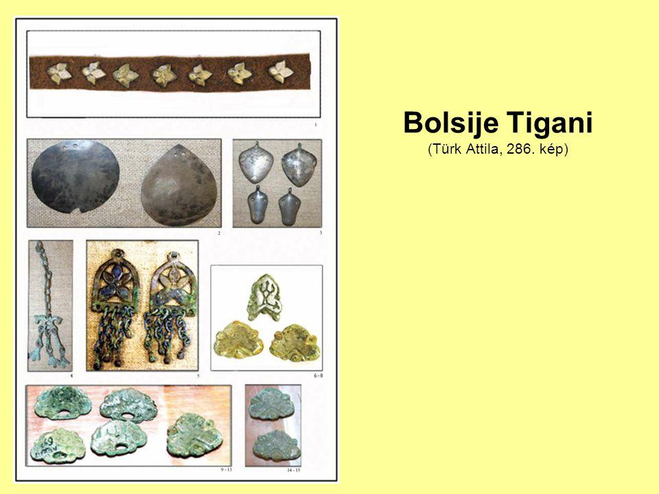 Bolsije Tigani (Türk Attila, 286. kép)