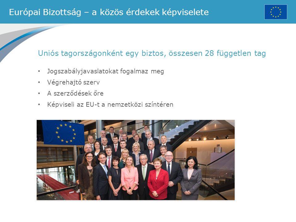 Európai Bizottság – a közös érdekek képviselete