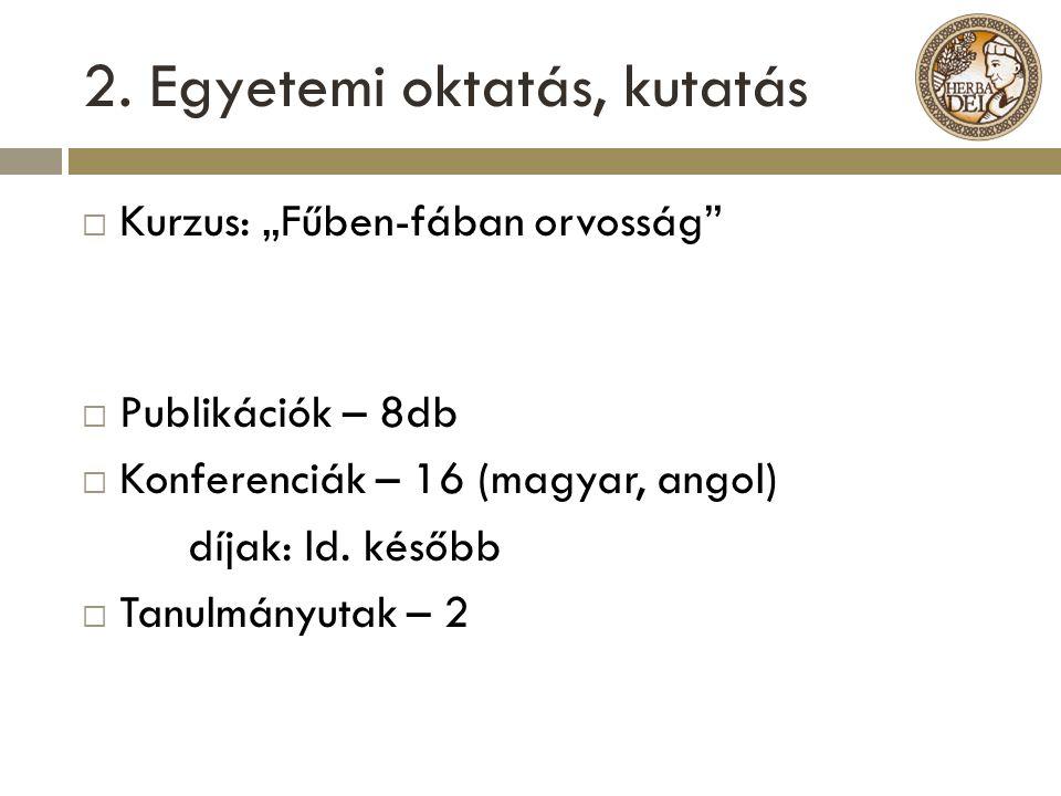 2. Egyetemi oktatás, kutatás