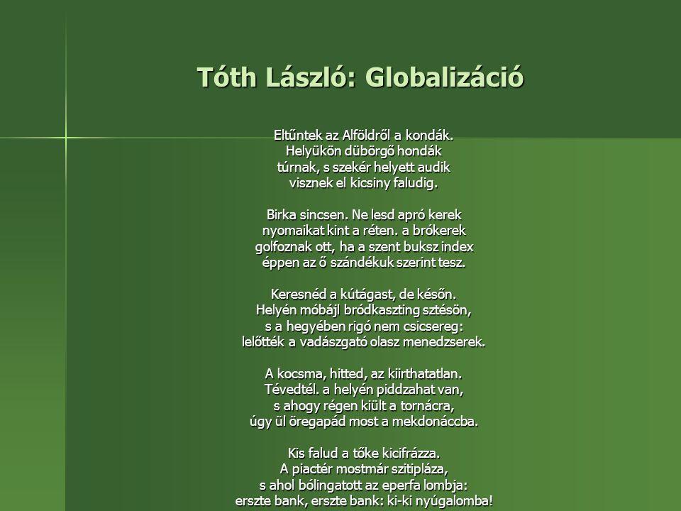 Tóth László: Globalizáció
