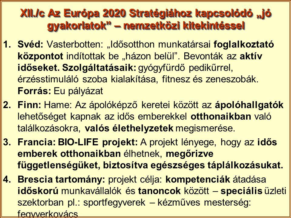 """XII./c Az Európa 2020 Stratégiához kapcsolódó """"jó gyakorlatok – nemzetközi kitekintéssel"""