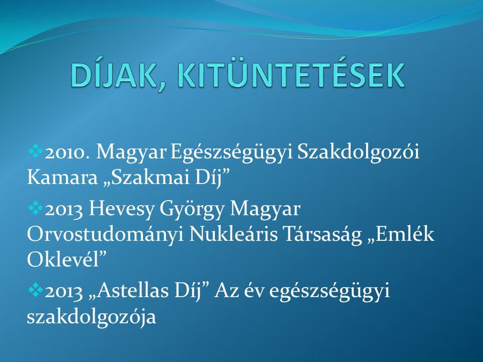"""DÍJAK, KITÜNTETÉSEK 2010. Magyar Egészségügyi Szakdolgozói Kamara """"Szakmai Díj"""
