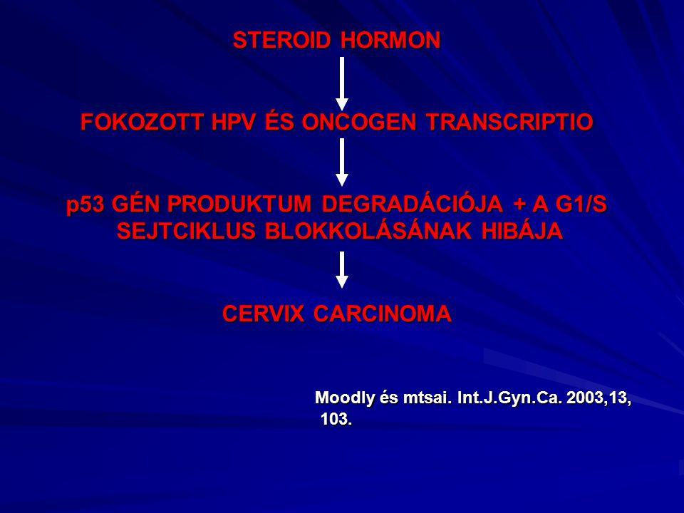 STEROID HORMON FOKOZOTT HPV ÉS ONCOGEN TRANSCRIPTIO p53 GÉN PRODUKTUM DEGRADÁCIÓJA + A G1/S SEJTCIKLUS BLOKKOLÁSÁNAK HIBÁJA CERVIX CARCINOMA Moodly és mtsai.
