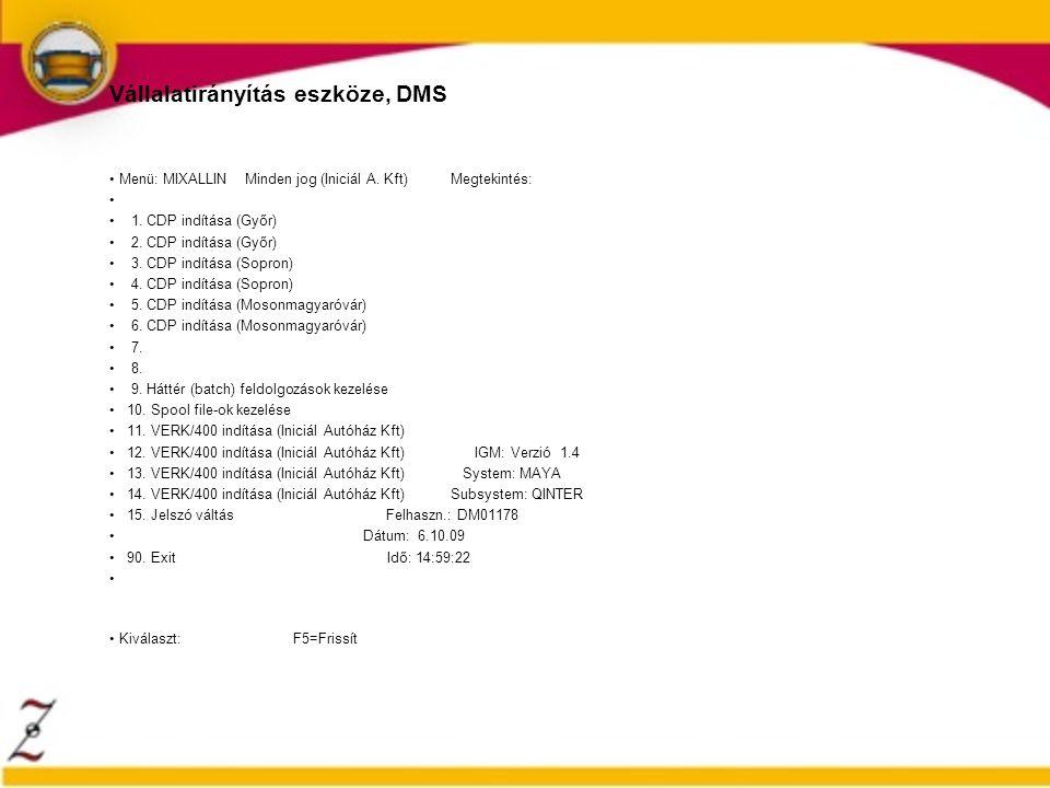 Vállalatirányítás eszköze, DMS