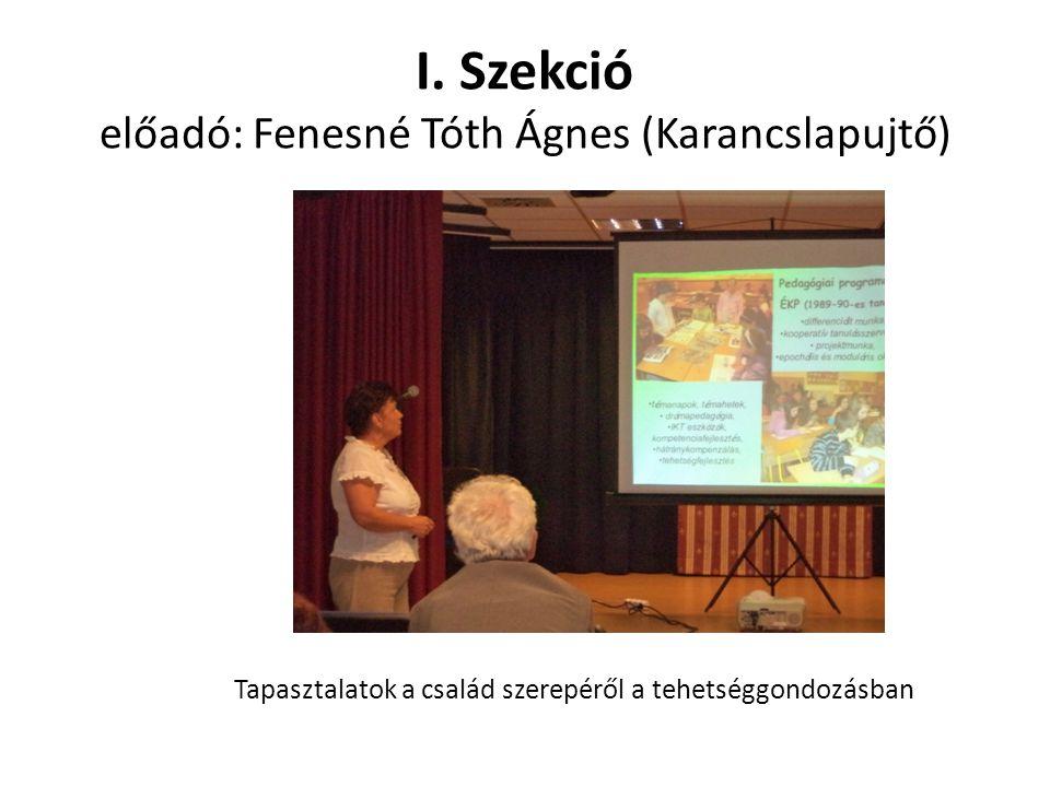 I. Szekció előadó: Fenesné Tóth Ágnes (Karancslapujtő)