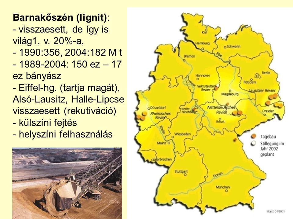 Barnakőszén (lignit):