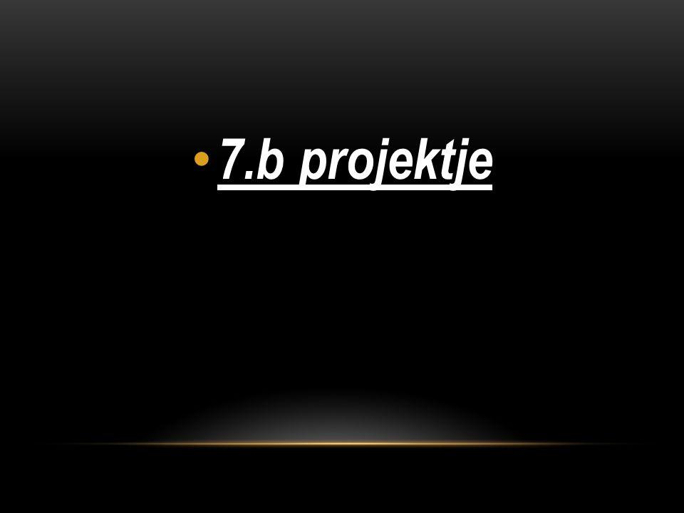 7.b projektje