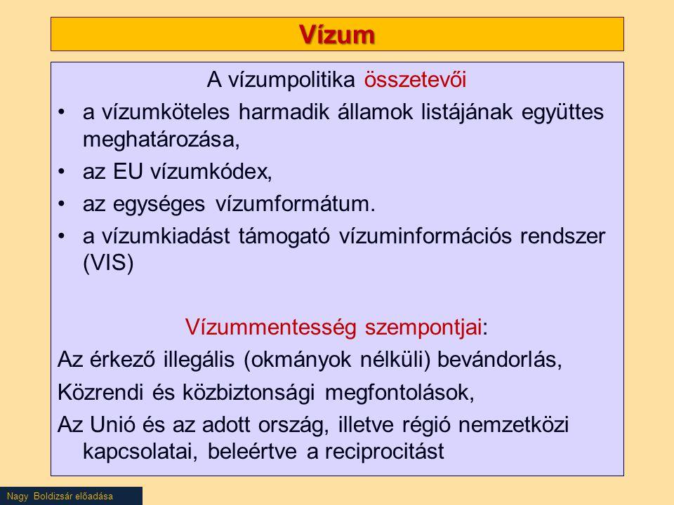 Vízum A vízumpolitika összetevői