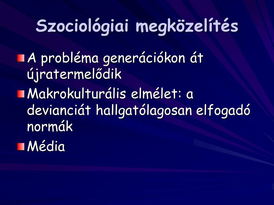 Szociológiai megközelítés