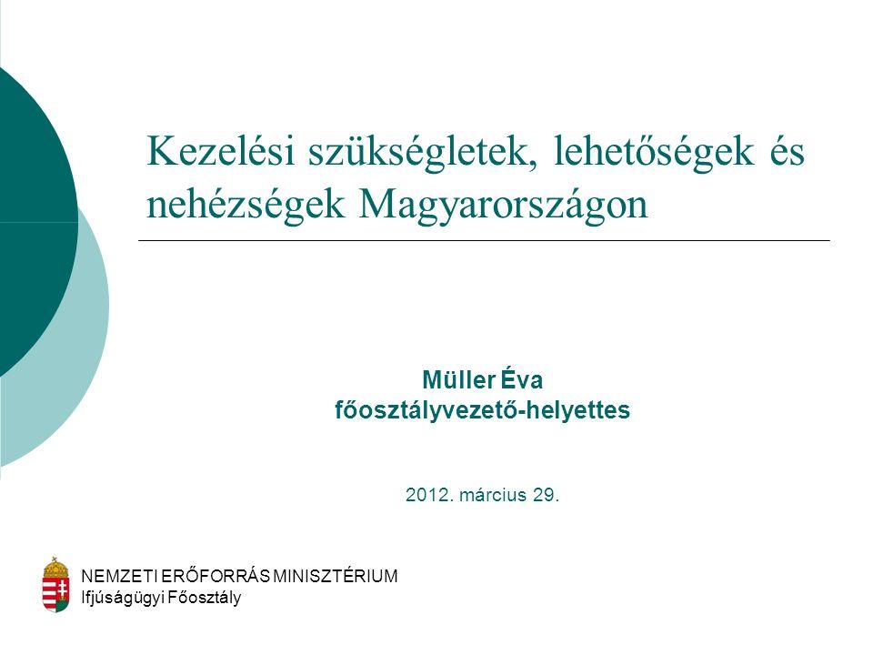 Kezelési szükségletek, lehetőségek és nehézségek Magyarországon
