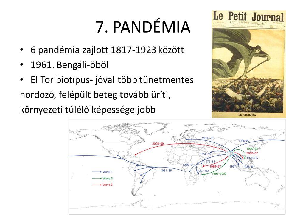7. PANDÉMIA 6 pandémia zajlott 1817-1923 között 1961. Bengáli-öböl