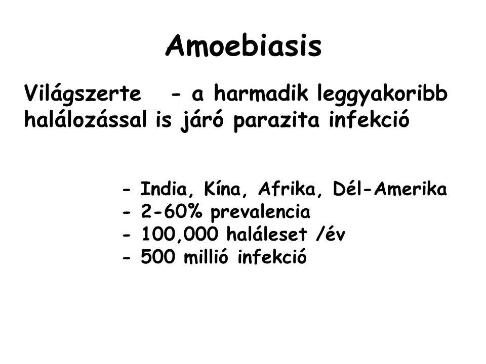 Amoebiasis Világszerte - a harmadik leggyakoribb halálozással is járó parazita infekció. - India, Kína, Afrika, Dél-Amerika.