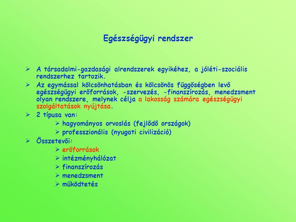 Egészségügyi rendszer