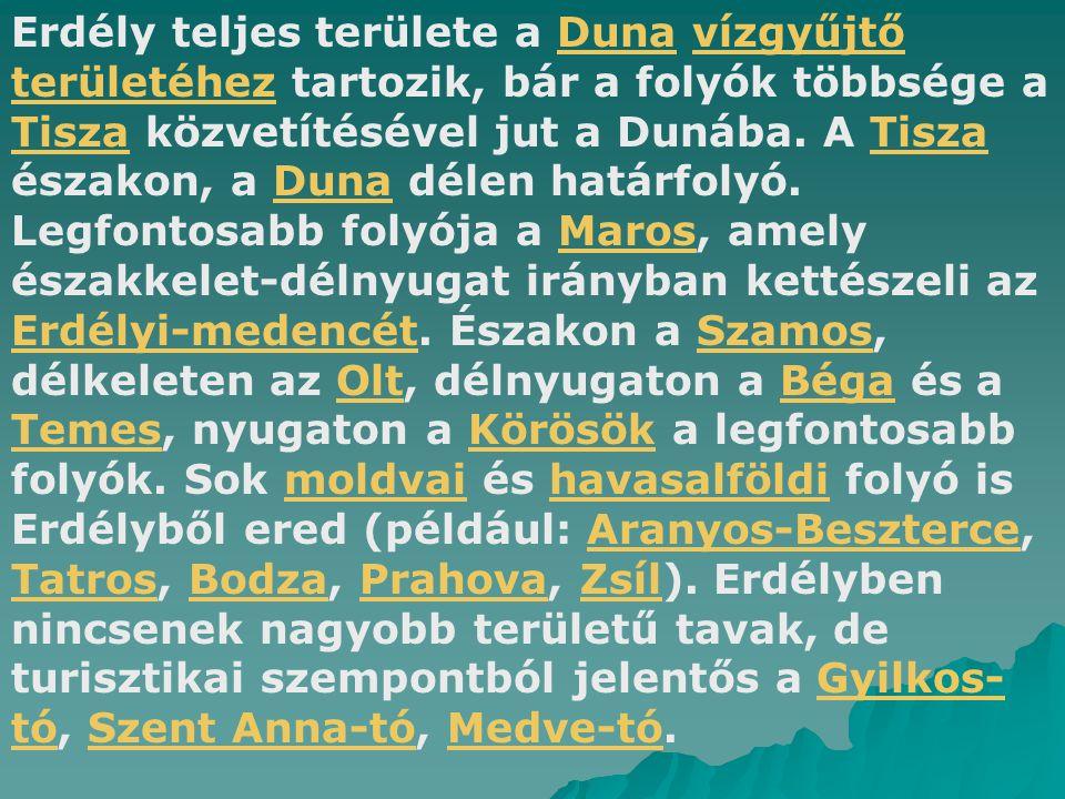 Erdély teljes területe a Duna vízgyűjtő területéhez tartozik, bár a folyók többsége a Tisza közvetítésével jut a Dunába.