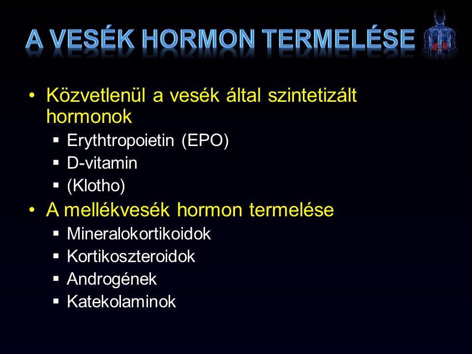 A vesék hormon termelése