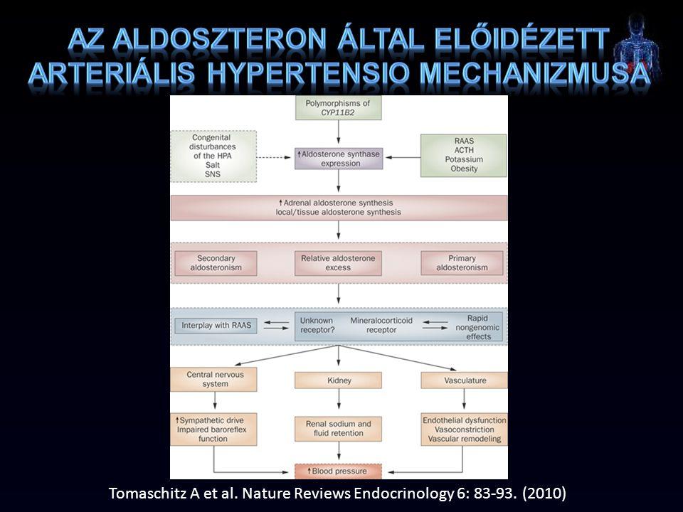 Az aldoszteron által előidézett arteriális hypertensio mechanizmusa