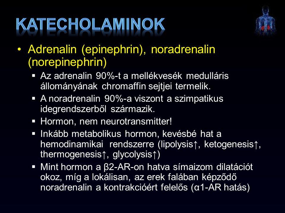 Katecholaminok Adrenalin (epinephrin), noradrenalin (norepinephrin)
