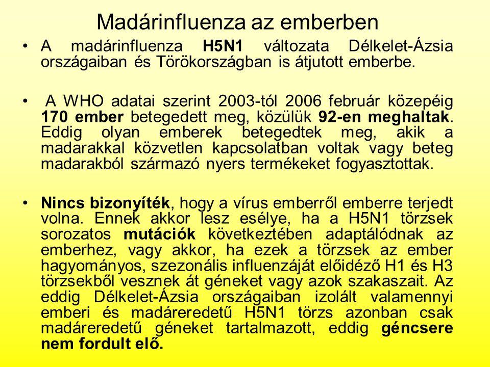 Madárinfluenza az emberben