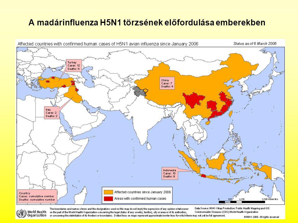 A madárinfluenza H5N1 törzsének előfordulása emberekben