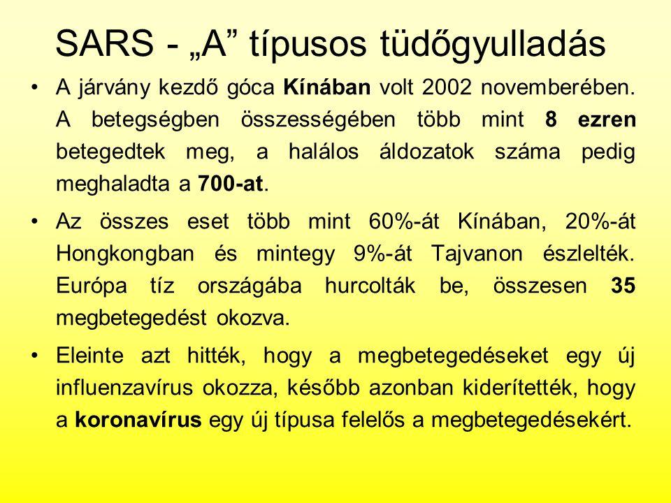 """SARS - """"A típusos tüdőgyulladás"""