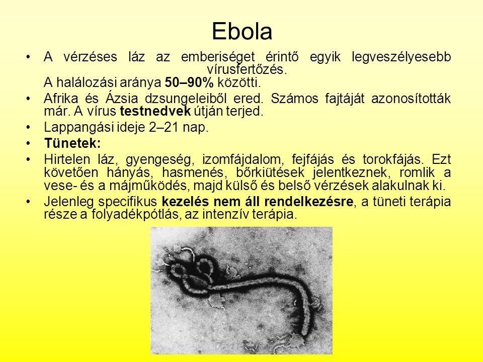 Ebola A vérzéses láz az emberiséget érintő egyik legveszélyesebb vírusfertőzés. A halálozási aránya 50–90% közötti.