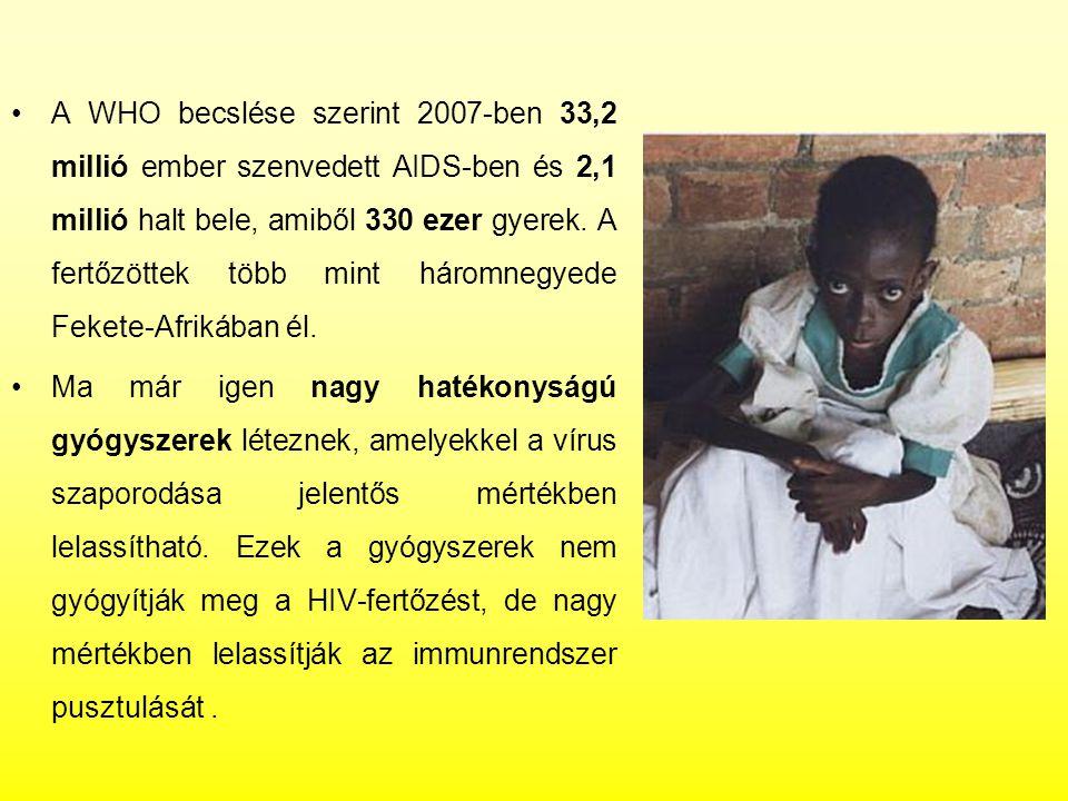 A WHO becslése szerint 2007-ben 33,2 millió ember szenvedett AIDS-ben és 2,1 millió halt bele, amiből 330 ezer gyerek. A fertőzöttek több mint háromnegyede Fekete-Afrikában él.