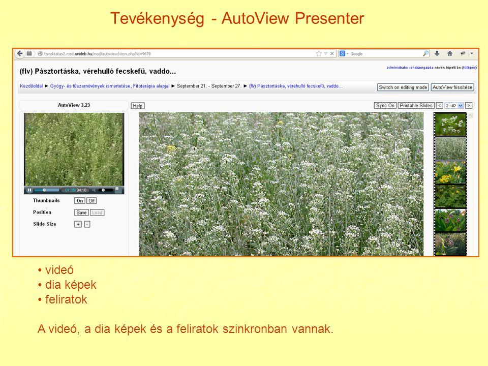 Tevékenység - AutoView Presenter