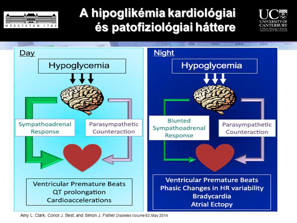 A hipoglikémia kardiológiai és patofiziológiai háttere