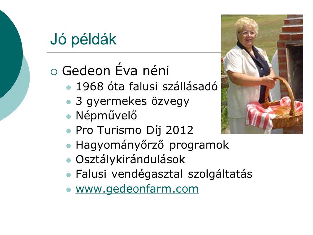Jó példák Gedeon Éva néni 1968 óta falusi szállásadó
