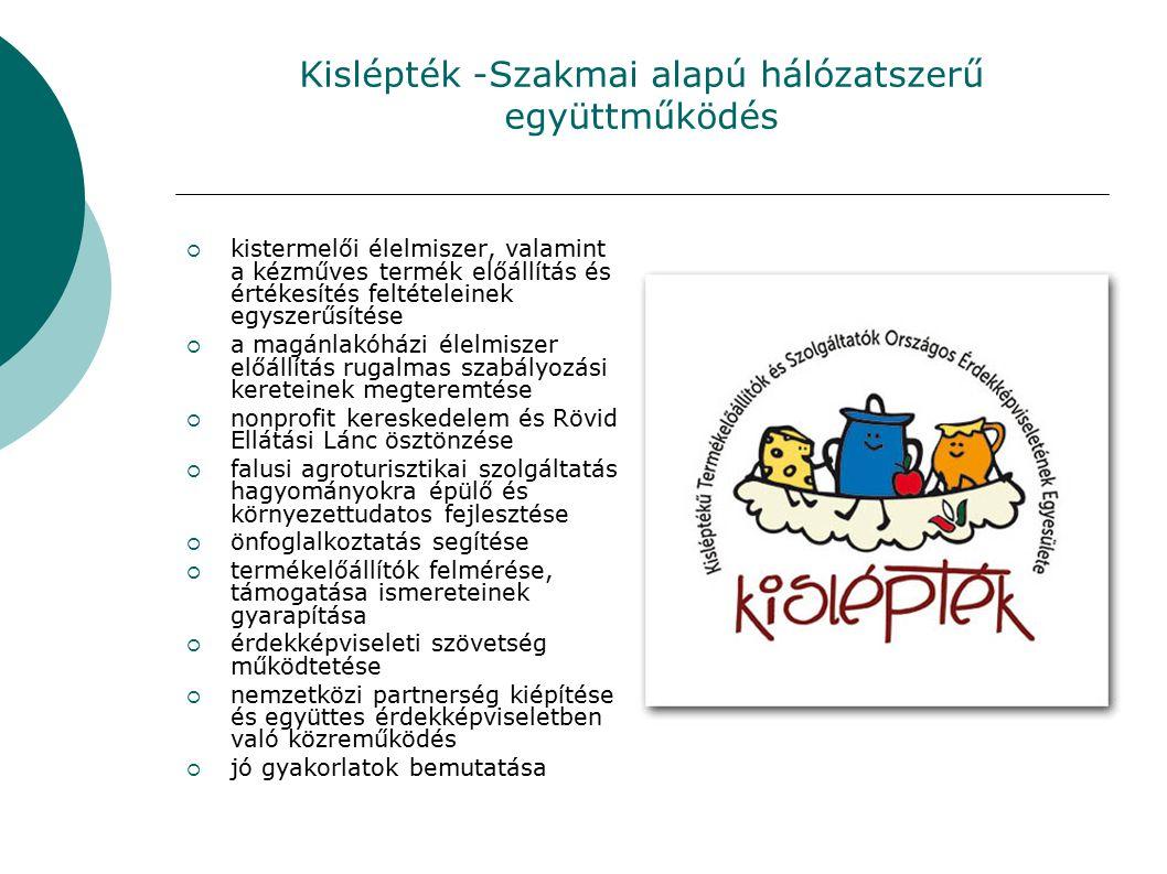 Kislépték -Szakmai alapú hálózatszerű együttműködés