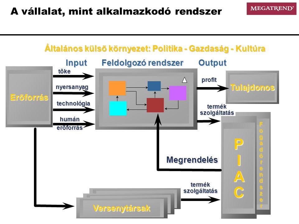 A vállalat, mint alkalmazkodó rendszer