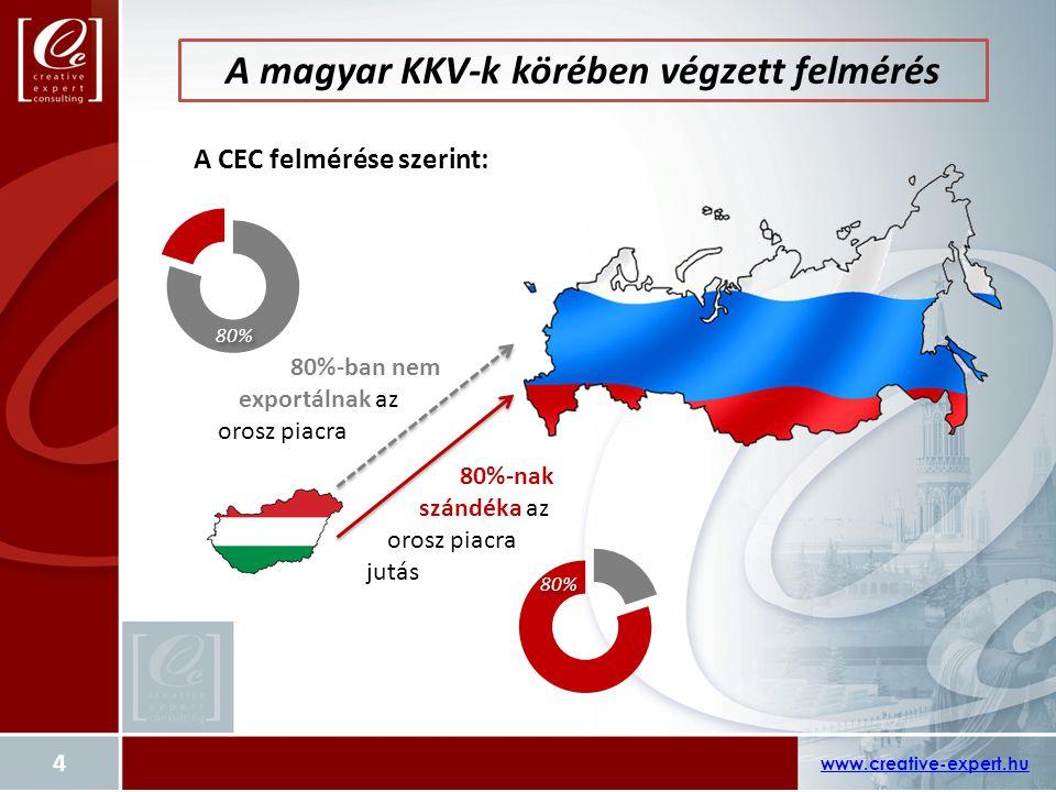 A magyar KKV-k körében végzett felmérés