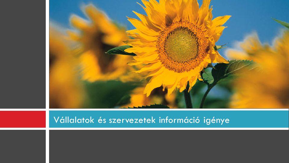 Vállalatok és szervezetek információ igénye
