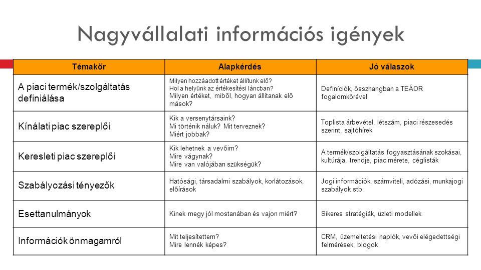 Nagyvállalati információs igények
