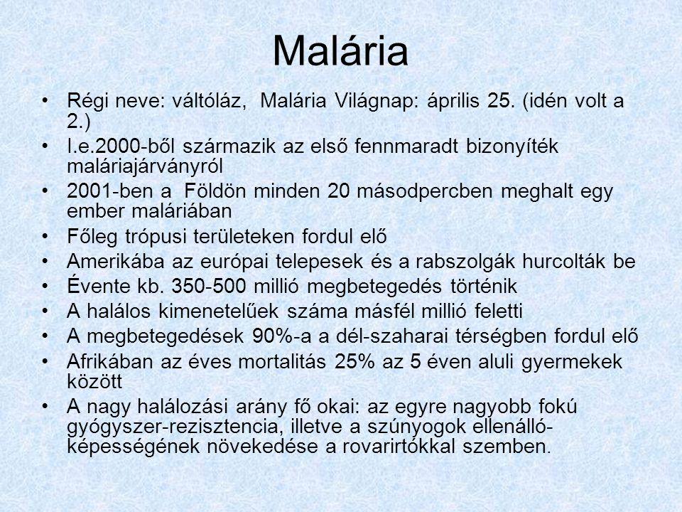 Malária Régi neve: váltóláz, Malária Világnap: április 25. (idén volt a 2.) I.e.2000-ből származik az első fennmaradt bizonyíték maláriajárványról.