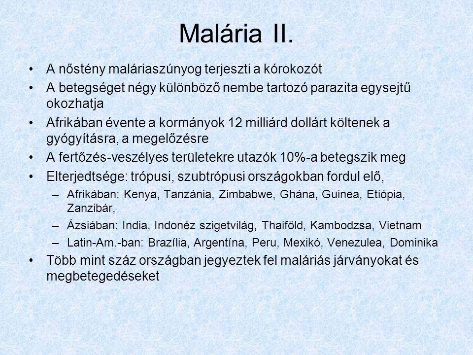 Malária II. A nőstény maláriaszúnyog terjeszti a kórokozót