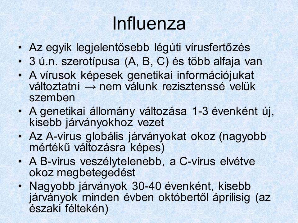 Influenza Az egyik legjelentősebb légúti vírusfertőzés