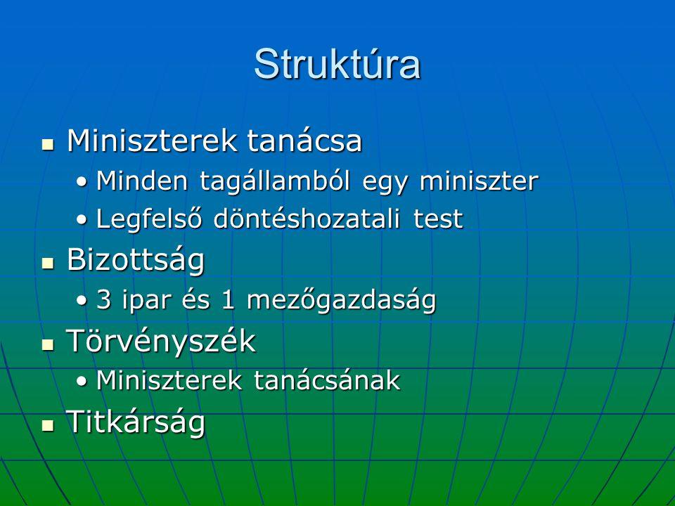 Struktúra Miniszterek tanácsa Bizottság Törvényszék Titkárság