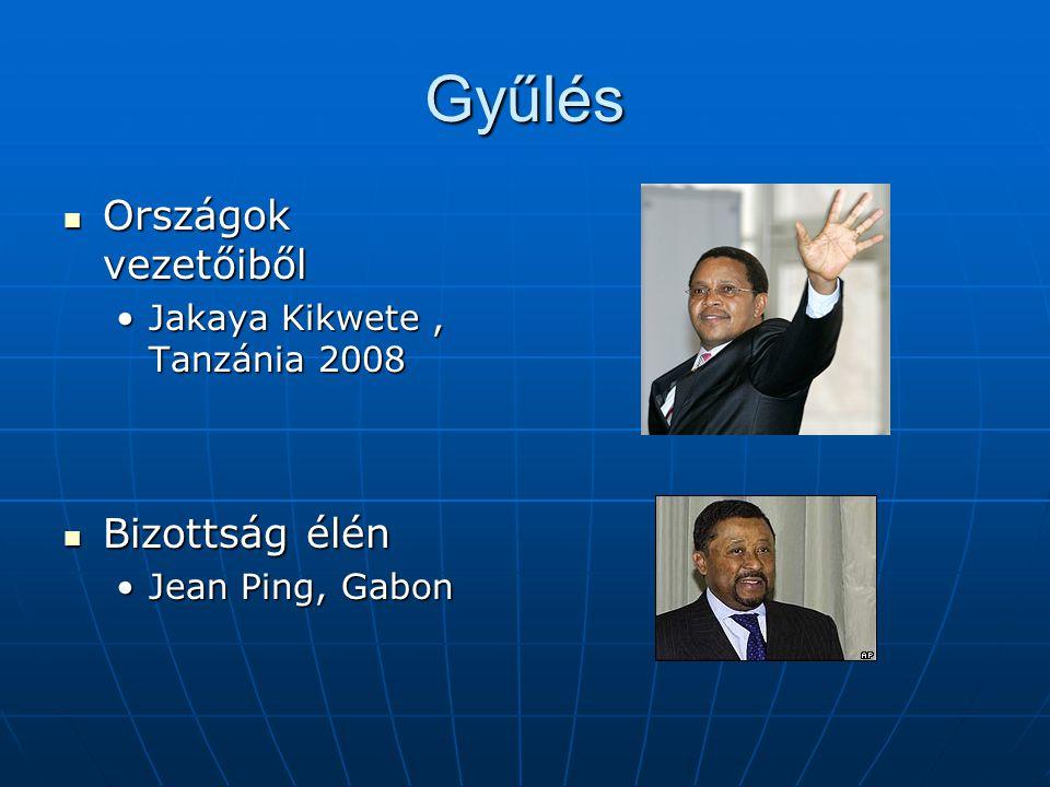 Gyűlés Országok vezetőiből Bizottság élén
